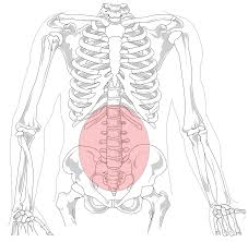 Lower Back Pain – Busting the Myths